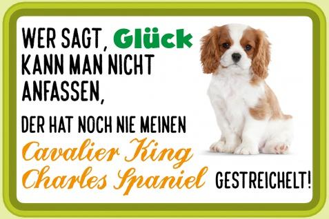 Blechschild Spruch Glück, Cavalier King Charles Spaniel Metallschild Wanddeko 20x30 cm tin sign