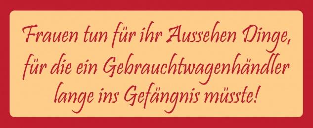 Blechschild Spruch Frauen tun für ihr Ausssehen Dinge... Metallschild 27x10 Deko