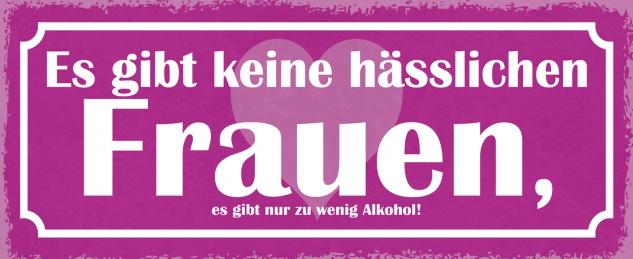 Blechschild Spruch Es gibt keine hässlichen Frauen, es gibt nur zu wenig Alkohol. Metallschild 27x10 Deko tin sign