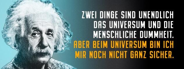 Blechschild Einstein: 2 Dinge sind unendlich Metallschild Wanddeko 27x10 cm tin sign