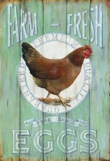 Farm Fresh Eggs free range eier blechschild