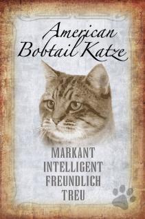 Katze steckbrief: American Bobtail - markant, intelligent, freundlich, treu Katze blechschild