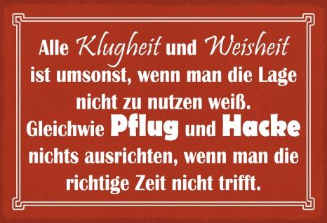 Blechschild Spruch Klugheit und Weisheit... Metallschild Wanddeko 20x30 cm tin sign