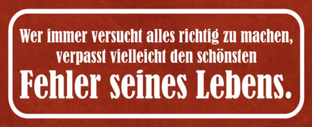 Blechschild Spruch Fehler seines Lebens Metallschild 27x10 cm Wanddeko tin sign