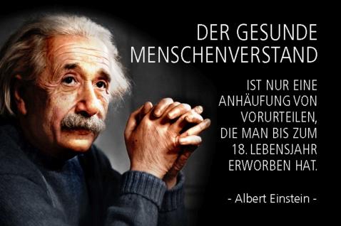 Blechschild Spruch Einstein Der gesunde Menschenverstand ist Metallschild Wanddeko 20x30 cm tin sign