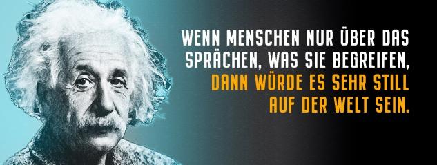 Blechschild Einstein: Wenn Menschen nur über das sprächen, was sie begreifen Metallschild Wanddeko 27x10 cm tin sign