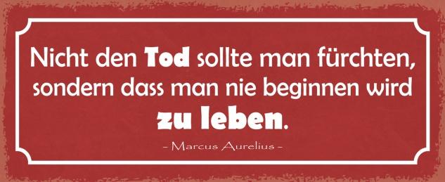 Blechschild Spruch Nicht den TOD sollte man fürchten, sondern dass man nie beginnen wird zu leben -Marcus Aurelius- Metallschild 27x10 Deko tin sign