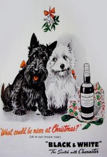 """Black & White Scotch whisky westie scottie terrier hund weihnachten """" The scotch with Character"""" blechschild"""