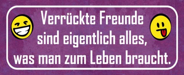 Blechschild Spruch Leben verrückte Freunde Metallschild 27x10 cm Wanddeko tin sign