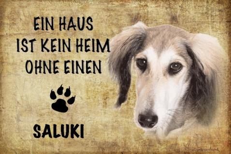 Ein haus ist kein heim ohne einen Saluki hund blechschild