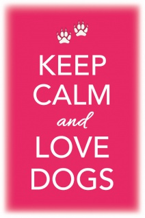 Keep Calm and Love Dogs Blechschild 20x30 cm