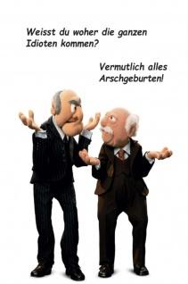 Blechschild Spruch Waldorf & Statler Idioten=Arschgeburten Metallschild Wanddeko 20x30 cm tin sign