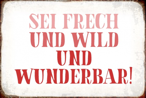 Blechschild Spruch Sei Frech, Wild, Wunderbar Metallschild Wanddeko 20x30 cm tin sign