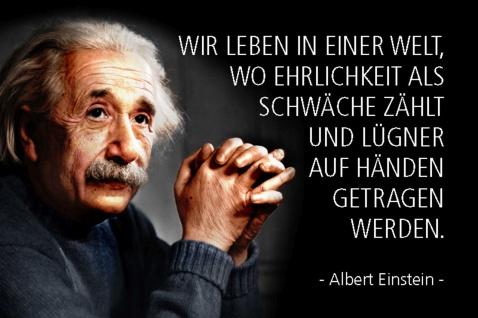 Blechschild Spruch Einstein Wir leben in einer Welt wo Metallschild Wanddeko 20x30 cm tin sign