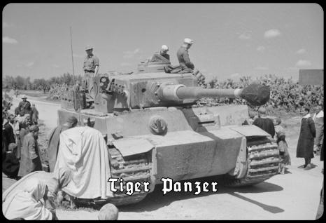 Blechschild Tiger Panzer (in Afrika) Metallschild Wanddeko 20x30 tin sign