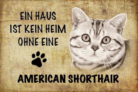 Ein haus ist kein heim ohne eine American Shorthair katze blechschild