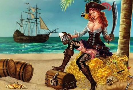 Pin up Piratin auf einer Insel mit Gold Blechschild 20x30 cm