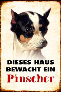 Blechschild Hund Dieses Haus bewacht ein Pinscher Metallschild Wanddeko 20x30 cm tin sign