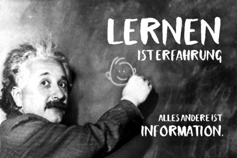 Blechschild Spruch Lernen ist Erfahrung Einstein Metallschild Wanddeko 20x30 cm tin sign