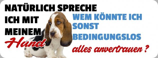 Blechschild Spruch Hund alles anvertrauen Metallschild 27x10 cm Wanddeko tin sign