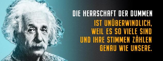 Blechschild Einstein: Herrschaft der Dummen Metallschild Wanddeko 27x10 cm tin sign