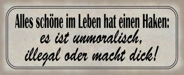 Blechschild Spruch schöne im Leben Haken Metallschild 27x10 cm Wanddeko tin sign