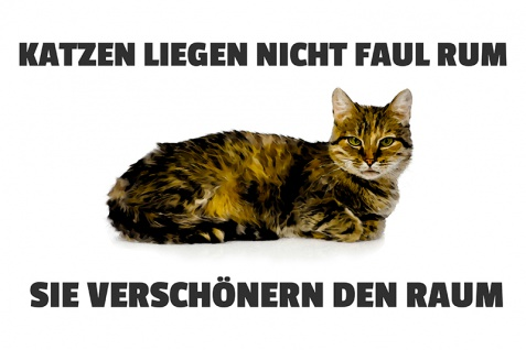 Blechschild Katzen liegen nicht faul rum? Metallschild Wanddeko 20x30 tin sign