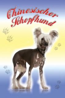 Schatzmix Blechschild Chinesischer Schopfhund Hund Metallschild 20x30 cm Wanddeko tin sign