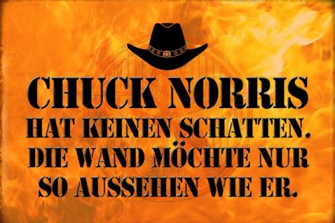 Blechschild Spruch Chuck Norris Keinen Schatten Metallschild Wanddeko 20x30 cm tin sign