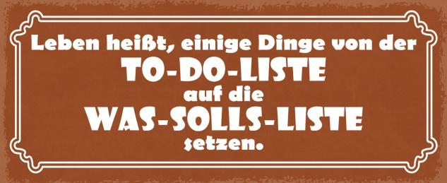 Blechschild Spruch Leben heißt einige Dinge auf der To-Do Liste Metallschild Wanddeko 27x10 cm tin sign