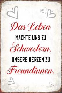 Blechschild Spruch Leben Schwester Herzen Freundin Metallschild 20x30tin sign
