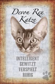 Katze Steckbrief: Devon Rex - intelligent, verwitz, verspielt, ruhig Blechschild 20x30 cm