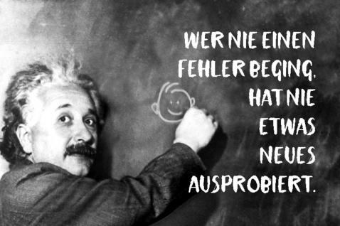 Blechschild Spruch Wer nie einen Fehler beging Einstein Metallschild Wanddeko 20x30 cm tin sign