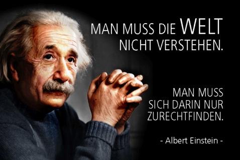 Blechschild Spruch Einstein Man muss die Welt Metallschild Wanddeko 20x30 cm tin sign