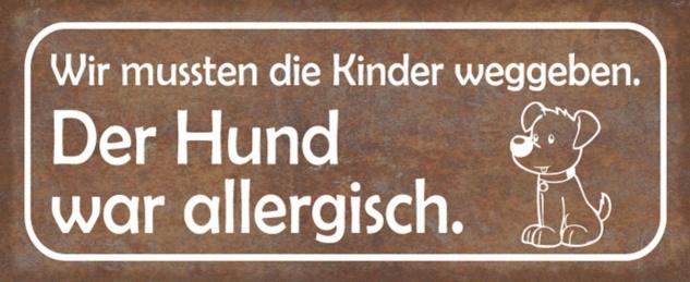 Blechschild Spruch Hund allergisch Kinder weg Metallschild 27x10 cm Wanddeko tin sign