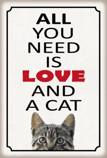 Blechschild All you need is love and a cat Metallschild 20x30 Deko