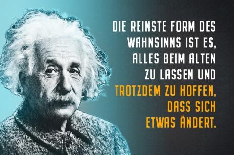 Blechschild Spruch Einstein Die reinste Form des Wahnsinns Metallschild Wanddeko 20x30 cm tin sign