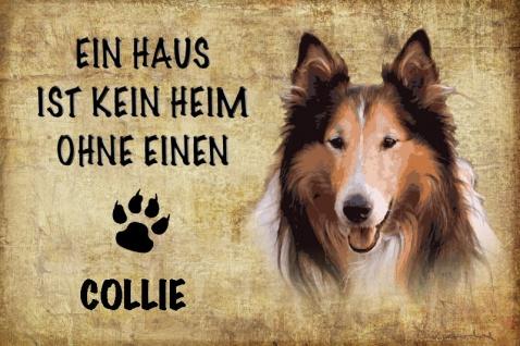 Hund: Ein Haus ist kein Heim ohne einen Collie Blechschild 20x30 cm