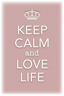 Keep Calm and Love Life Blechschild 20x30 cm