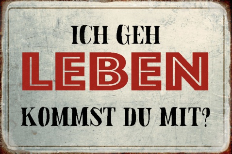 Blechschild Spruch Ich geh Leben kommst du mit Metallschild Wanddeko 20x30 cm tin sign