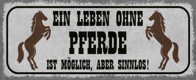 Blechschild Spruch Leben ohne Pferd Metallschild 27x10 cm Wanddeko tin sign