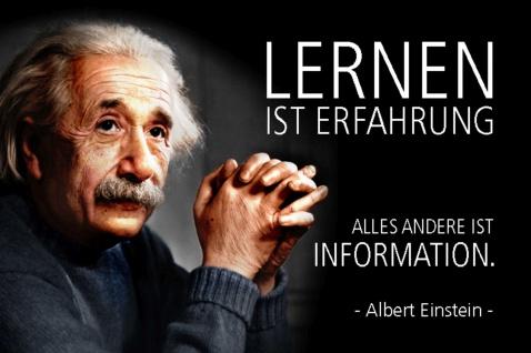 Blechschild Spruch Einstein Lernen ist Erfahrung alles Andere Metallschild Wanddeko 20x30 cm tin sign