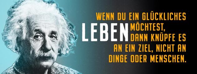 Blechschild Einstein: Wenn Du ein glückliches Leben möchtest Metallschild Wanddeko 27x10 cm tin sign