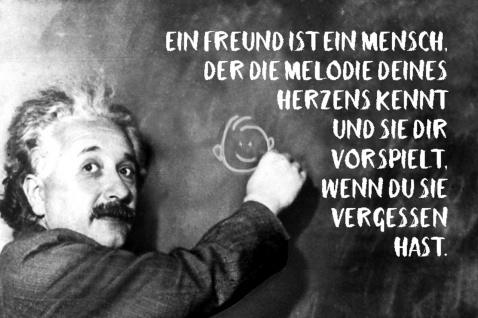 Blechschild Spruch Ein Freund die Melodie Einstein Metallschild Wanddeko 20x30 cm tin sign
