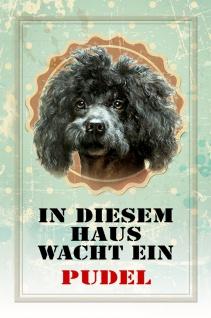 Blechschild Hund In diesem Haus wacht ein Pudel Metallschild Wanddeko 20x30 cm tin sign
