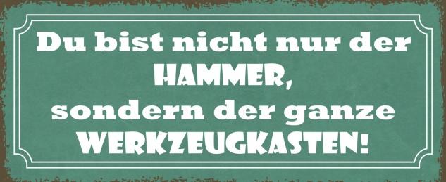 Blechschild Spruch Du bist nicht nur der Hammer, sondern Metallschild 27x10 Deko