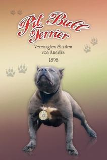 Schatzmix Blechschild Pit Bull Terrier USA 1898 Hund Metallschild 20x30 cm Wanddeko tin sign