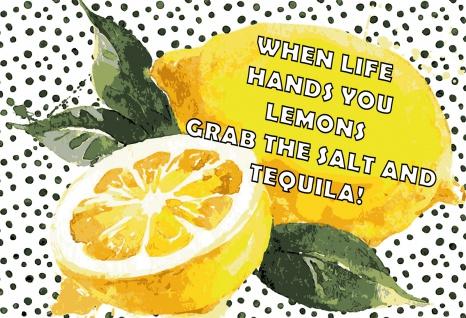 Blechschild Spruch When life hands you lemons... Metallschild 20x30 Deko tin sign