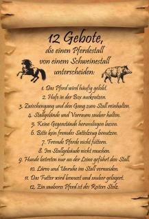 Blechschild 12 Gebote Unterschied Pferdestall zu Schweinestall Deko 20x30 cm