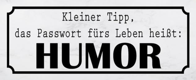 Blechschild Spruch Passwort Leben Humor Metallschild 27x10 cm Wanddeko tin sign